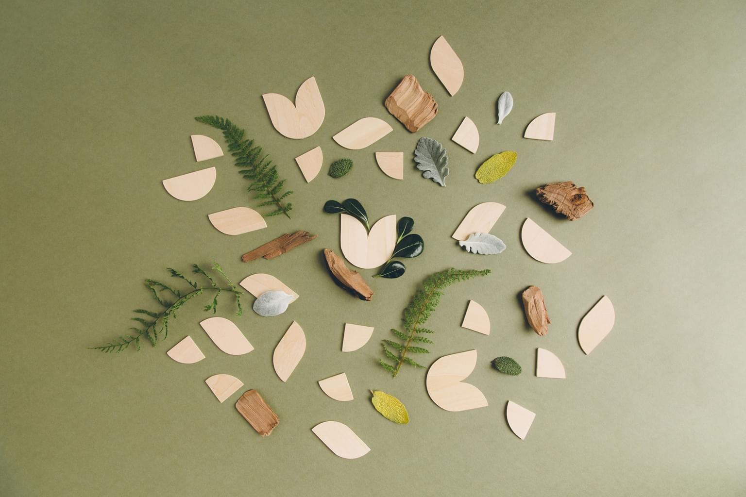 Assorted shapes, twigs, leaves and natural elements arranged in a pattern
